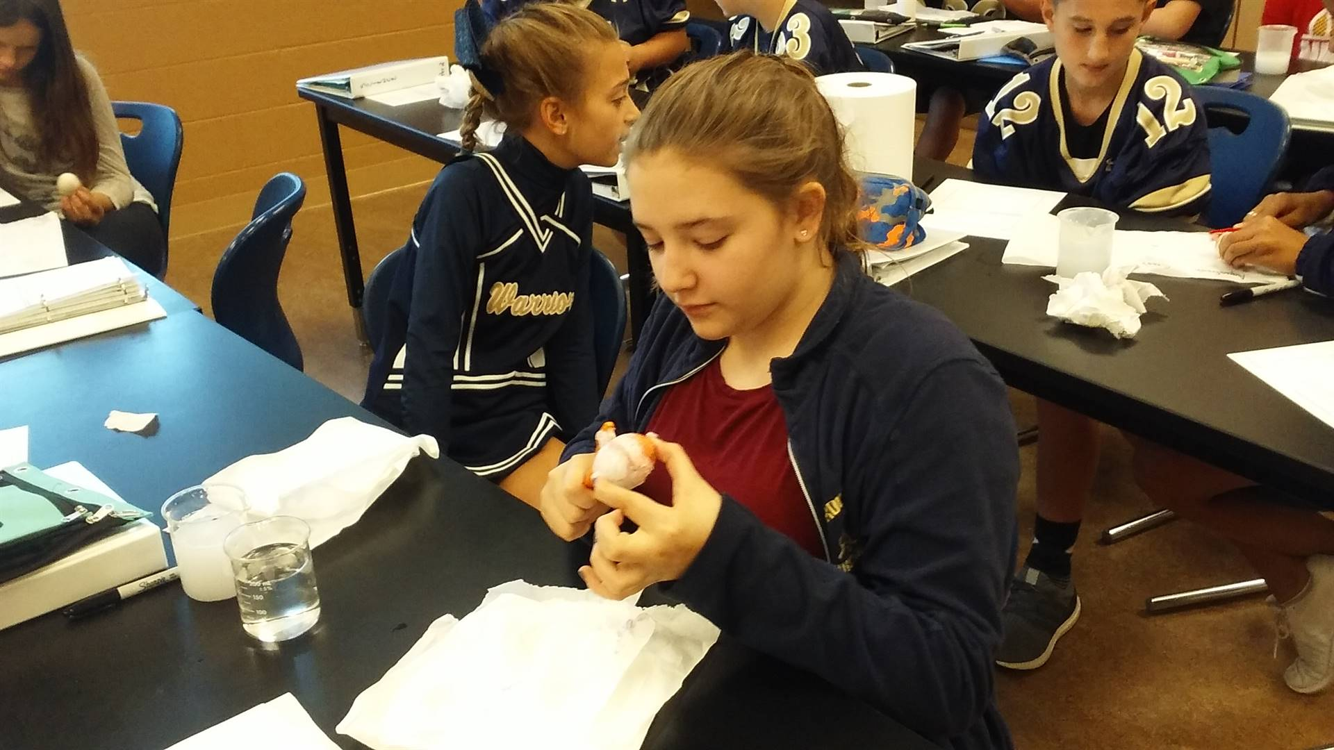 Students in Mr. Berry's science class design an experiment used to investigate which brand of toothp