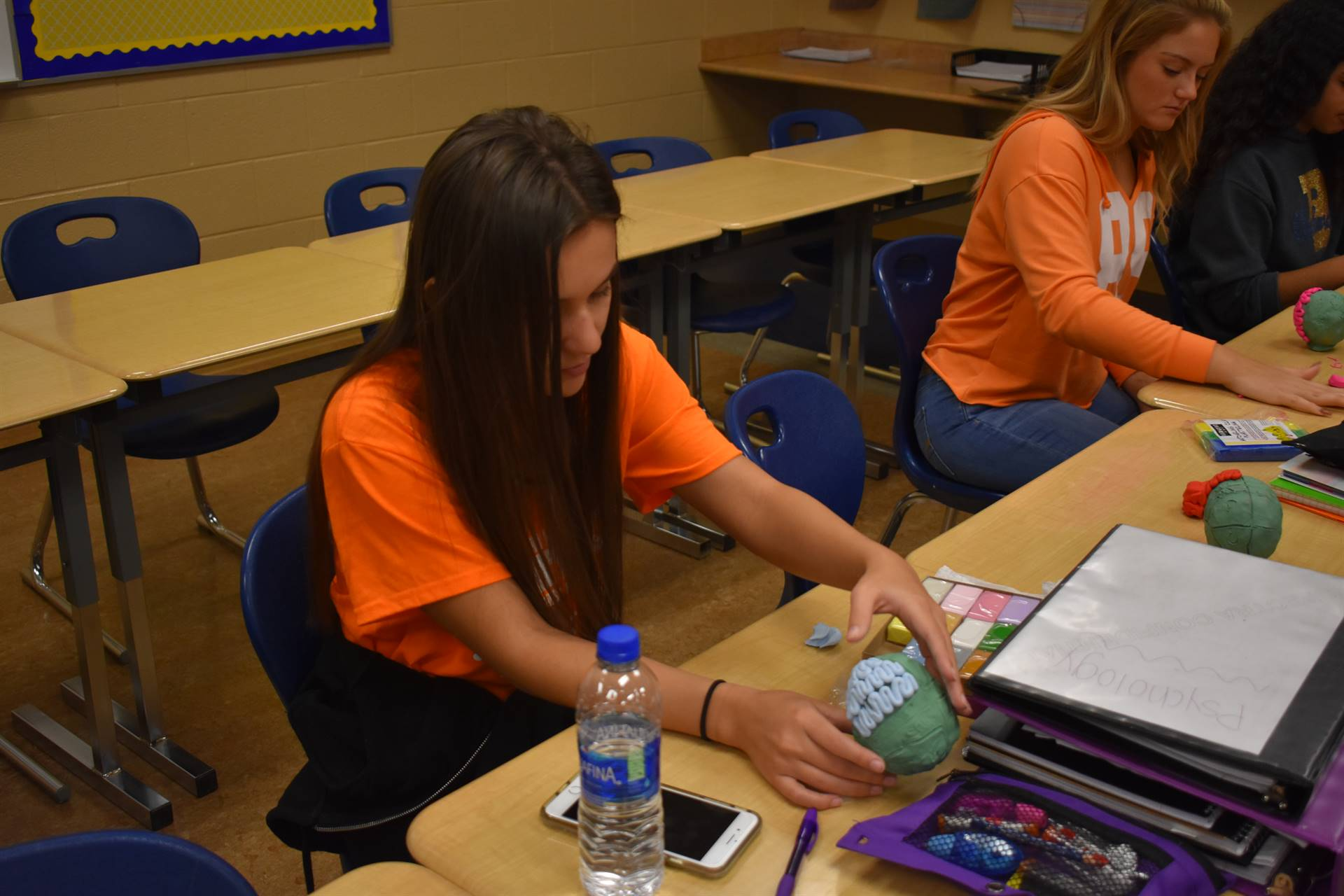 Students create brains in psychology class
